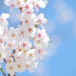 定着率UPのための、春の研修トレンドキーワード予想