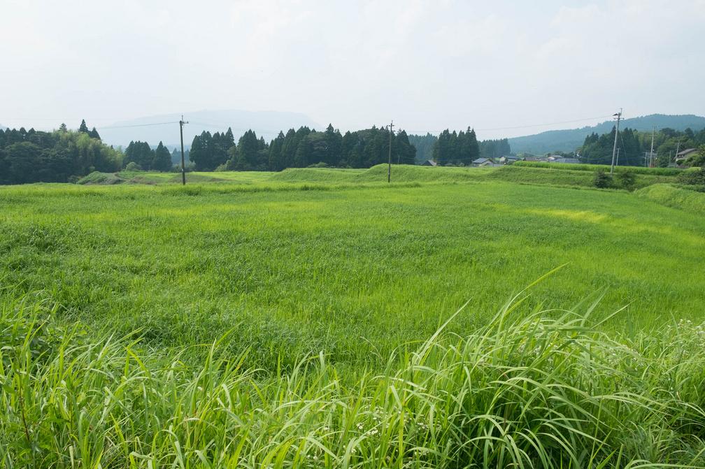 東日本,震災,景色