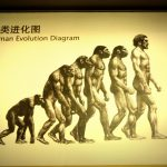 進化≒変化!