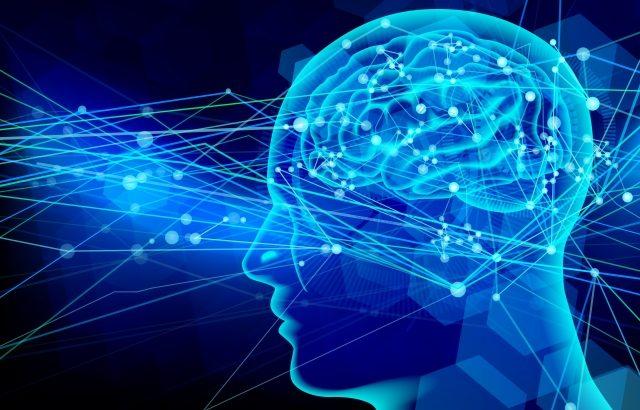 脳,勘違い,ビジョン